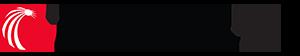 LexisNexis IP